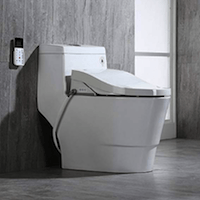 WOODBRIDGE T-0008 LUXURY BIDET TOILET